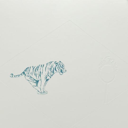 Maud tigre bleu transparent 1