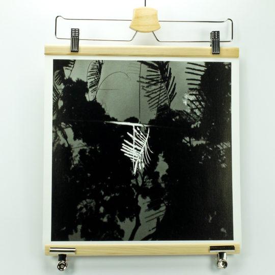 delphine-tapisserie-feuilles-1