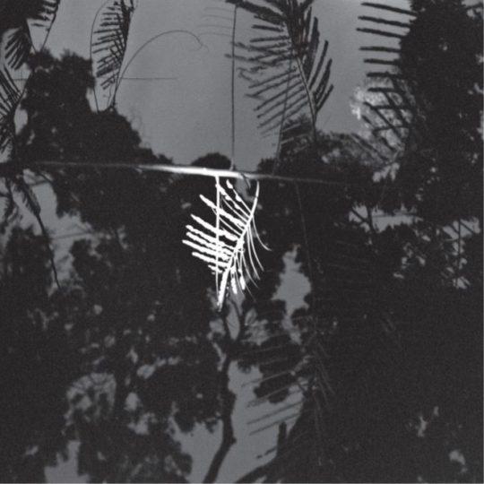 delphine-tapisserie-feuilles-2