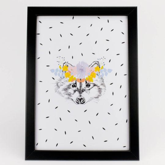 Ahi'di raccoon 1