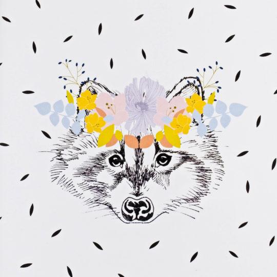 Ahi'di raccoon 2