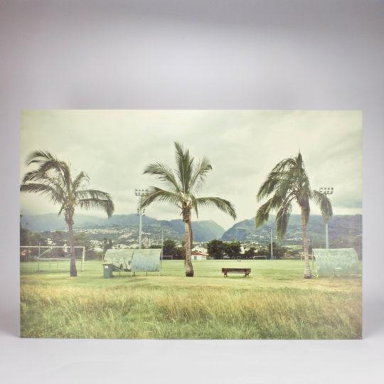 Romu Palmiers bois 3
